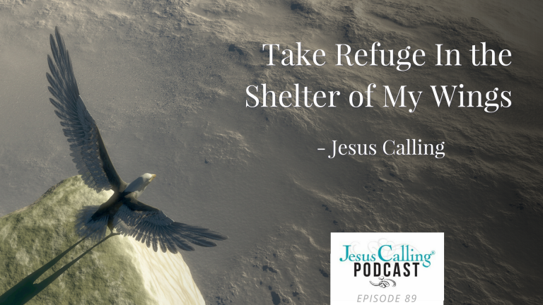 Take Refuge in the Shelter of My Wings ~ Jesus Calling
