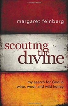 Margaret Feinberg - Scouting the Divine book